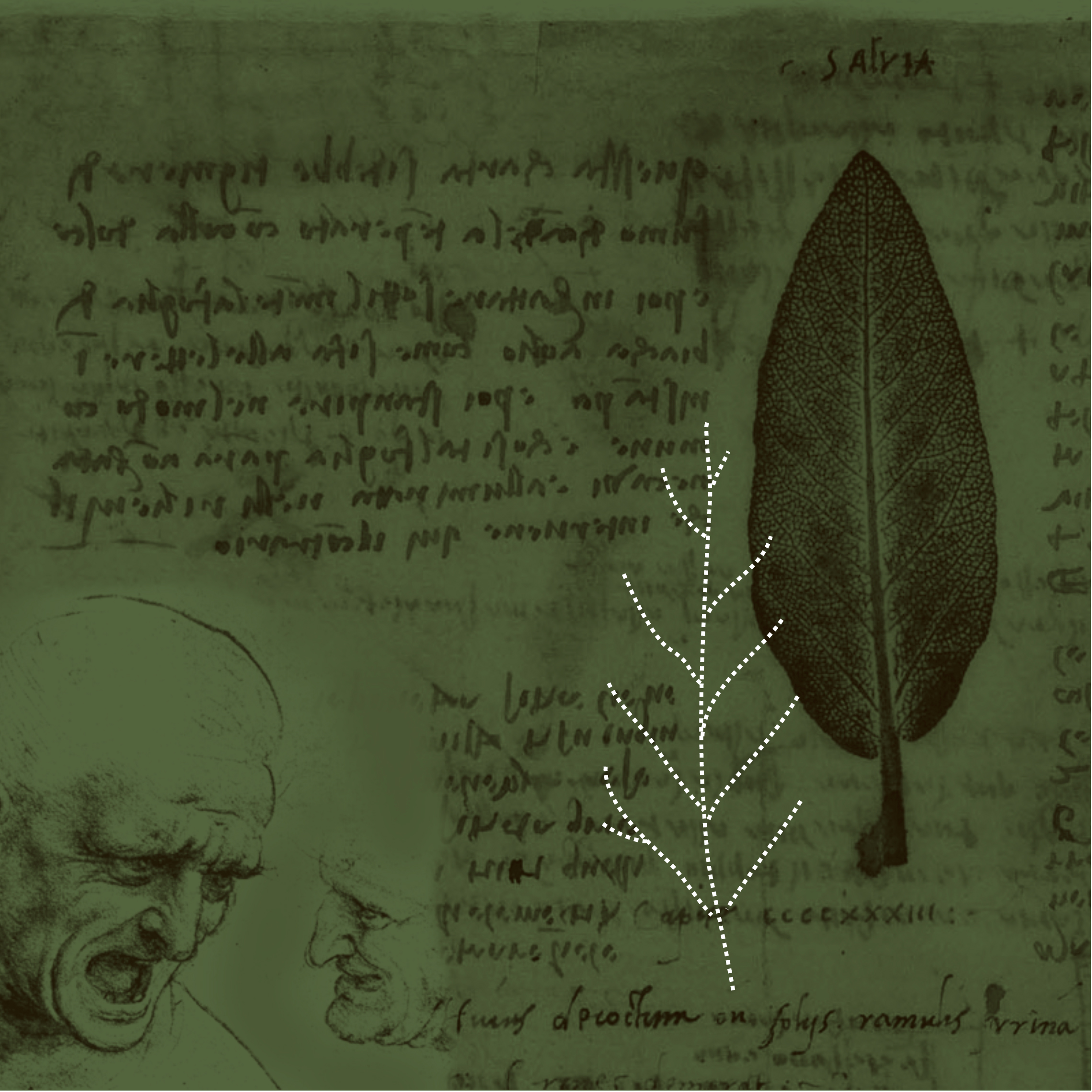 Tra natura, storia e cultura (II)